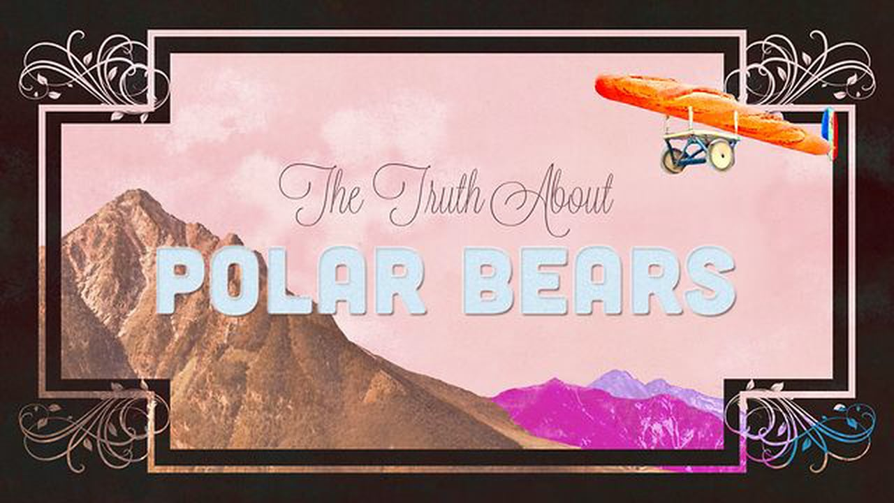 ROCK BAND LAND: The Truth About Polar Bears