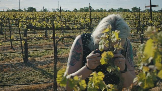 DARK HORSE: Beth – Winemaker